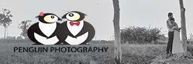 סטודיו פינגווין